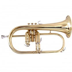 FLICORNO SOPRANO SFLH-10G Sib GOLD SOUNDSATION